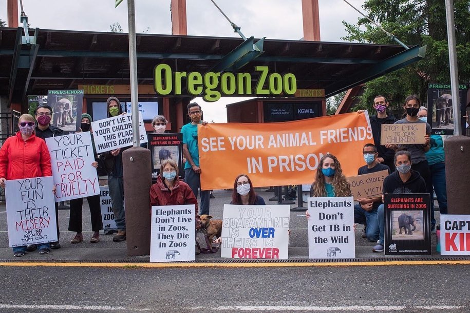 Demo at the zoo on July 12th