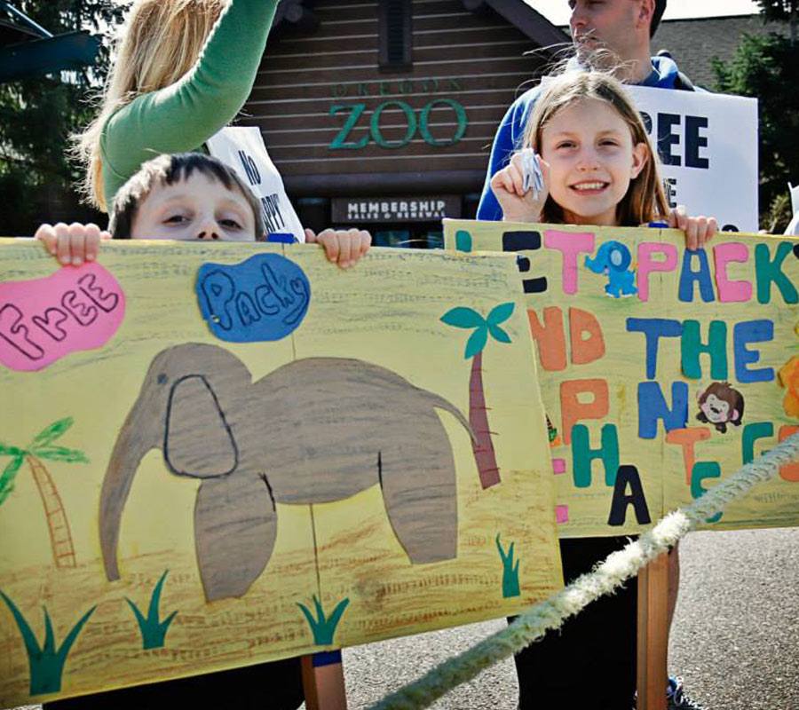 Children Protesting to Free Oregon Zoo Elephant Packy | FOZE Facts